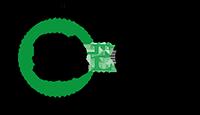 FAECAM Logo