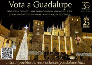 VOTA a Guadalupe